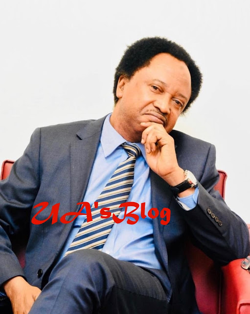 Shehu Sani Recommends Book On 'How To Sleep Better' To Osinbajo