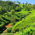 CHIKMANGLOOR - a  beautifull hill station of karnataka