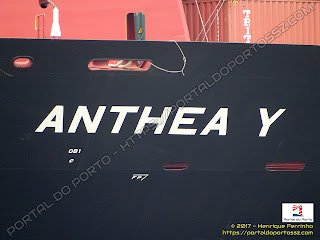 Anthea Y