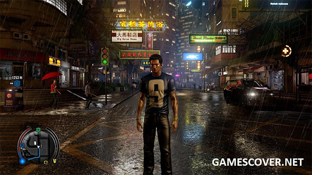 Sleeping Dogs Definitive Edition Story