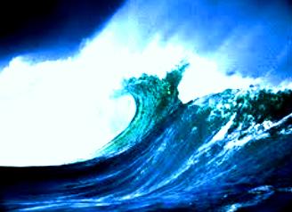 yang membantu dalam membedakan gelombang dalam menentukan jenis Pengertian Gelombang dan Jenis-Jenis Gelombang