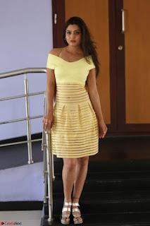 Shipra gaur in V Neck short Yellow Dress ~  037.JPG