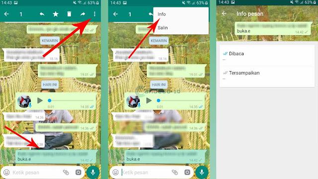 Gambar 3 Cara Mengetahui Chat WA Dibaca