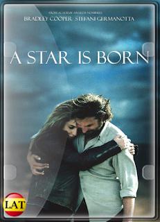 Nace Una Estrella (2018) DVDRIP LATINO