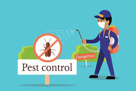 DO YOU KNOW PEST CONTROL SERVICES ?