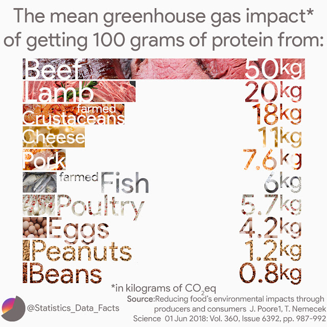 The mean greenhouse gas emissions of getting 100 grams of protein from beef, lamb, farmed crustacean, cheese, pork, farmed fish, poultry, eggs, peanuts and beans
