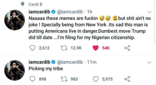 """""""I Am Filing For My Nigerian Citizenship"""" – Cardi B Set To Become Nigerian As She Blasts US President; Donald Trump"""