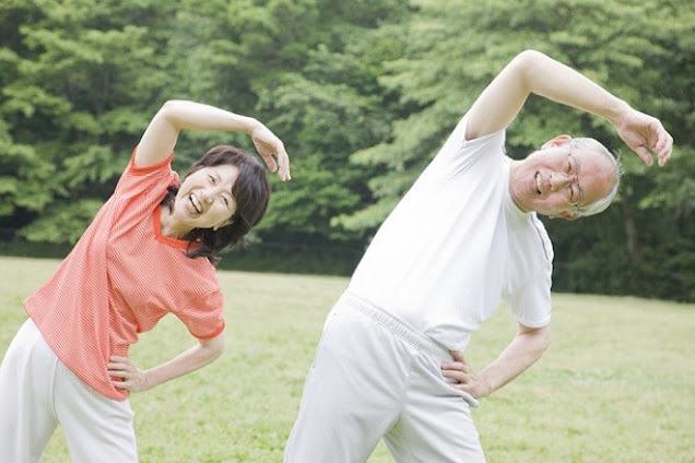 Thảo dược thiên nhiên tăng cường sức khỏe xương khớp