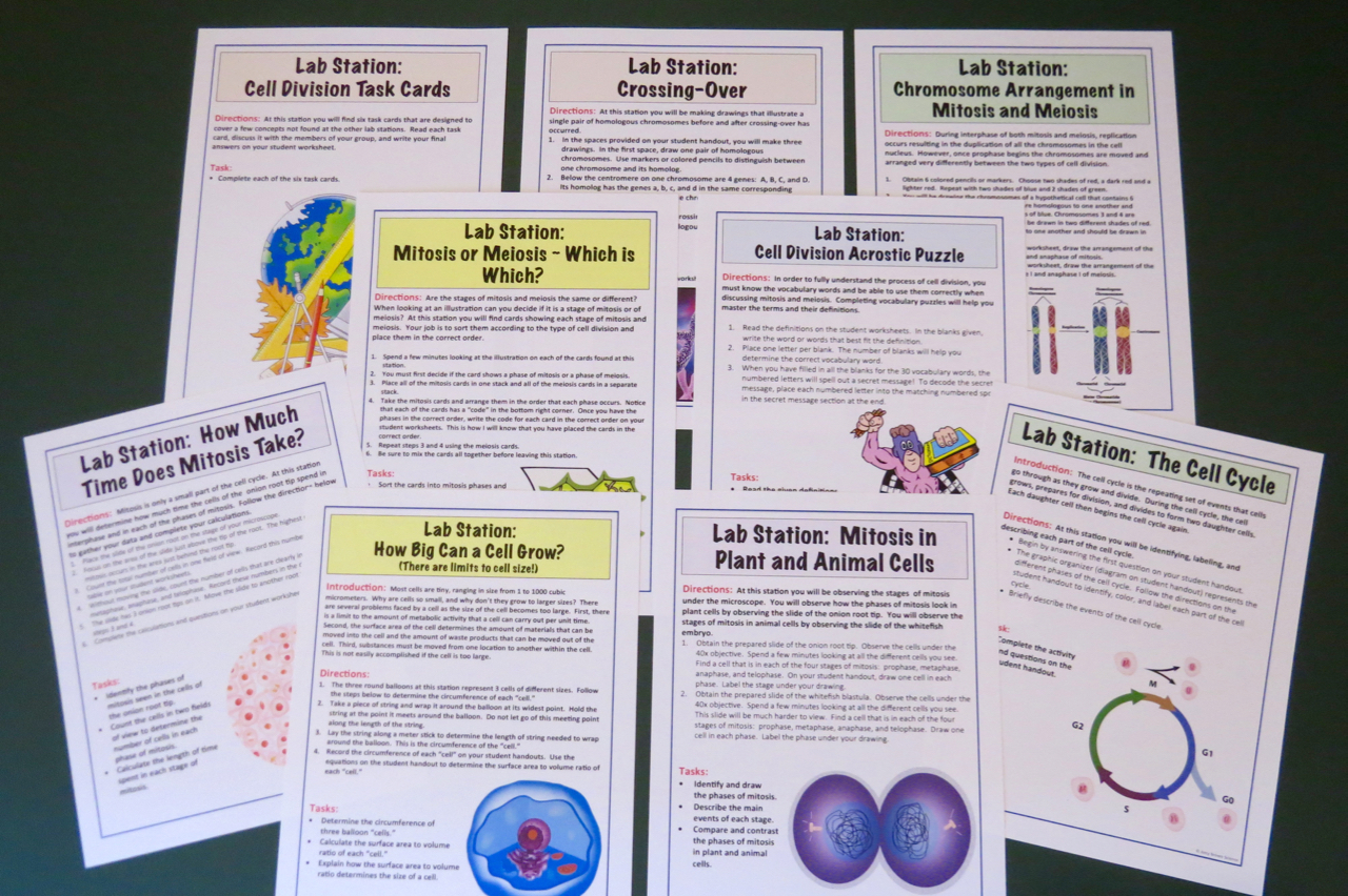 Amy Brown Science Lab Stations How To Make Them Work For