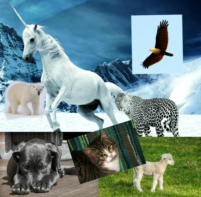 #Blogtober16-day-11-your-favourite-type-of-animal