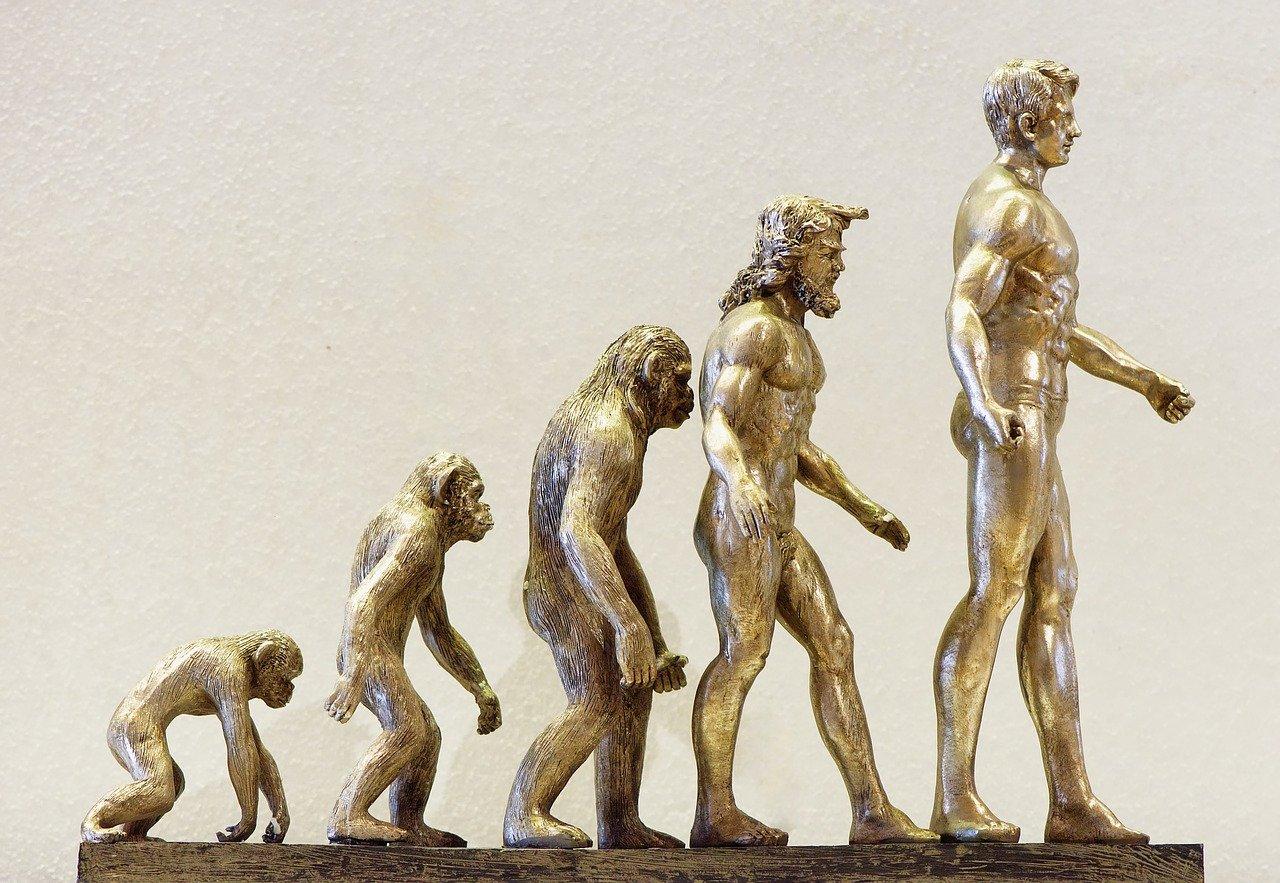 Origens do ser humano: Criacionismo ou Evolucionismo