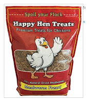 Yummy for Chickens
