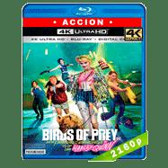 Aves de presa (y la fantabulosa emancipación de una Harley Quinn) (2020) Ultra HD BDRip 2160p Latino