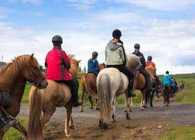 Grupo de turistas cabalgando caballos islandeses en tours disponibles aun en septiembre