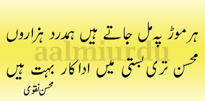 best collection of urdu shayari, 2 line shayari