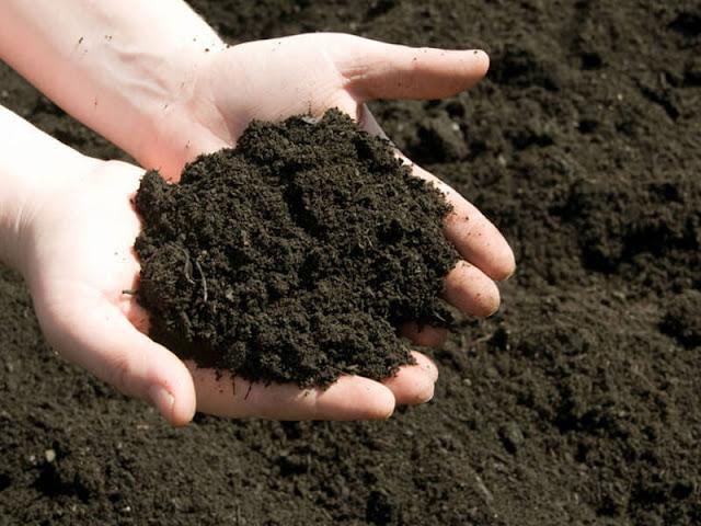 7 Sifat Fisik Tanah dan Pengertiannya