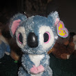 Day 6 Very RARE and Hard to Find Beanie Boos! KOALA