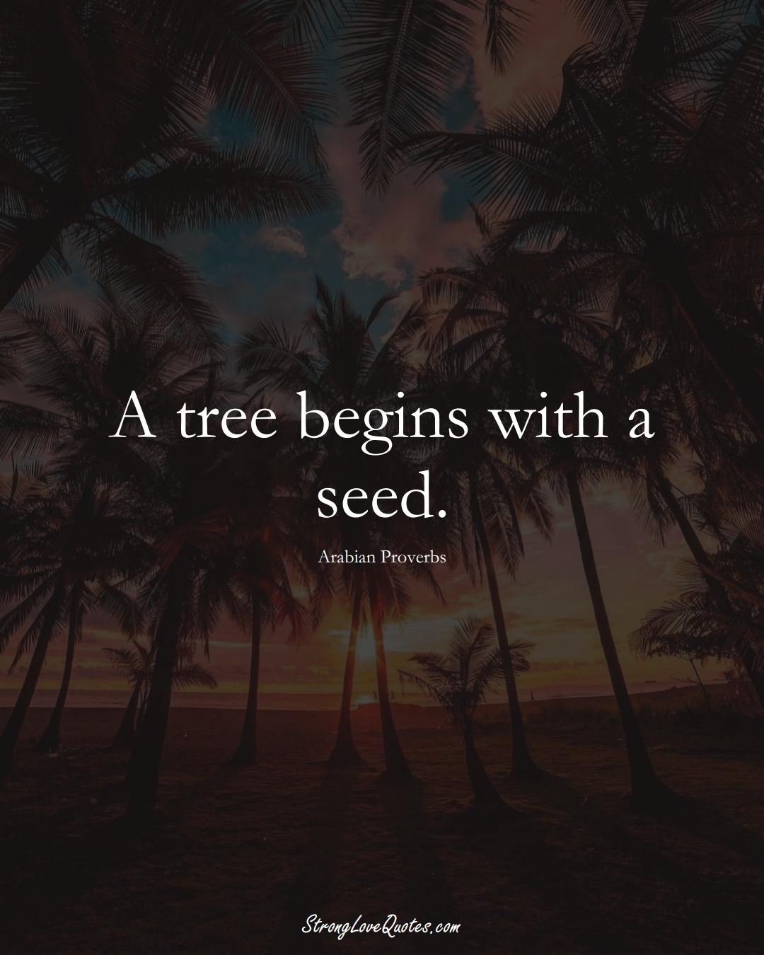 A tree begins with a seed. (Arabian Sayings);  #aVarietyofCulturesSayings