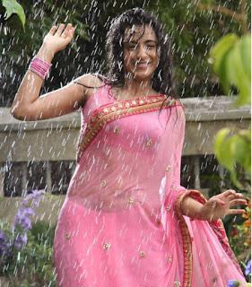 south-actress-wet-saree