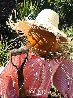 fall, fall decorating, fall home decor, scarecrows, pumpkins, pumpkin decor, Halloween decor, decorating with pumpkins, farmhouse decor, rustic decor, garden scarecrow, diy, diy home decor, diy projects, thrifted, faux pumpkins, Funkins, repurposing, upcycling, wire tomato cage crafts, in the garden. on the front porch, front porch fall decor, rusty metal, pumpkin head scarecrow.