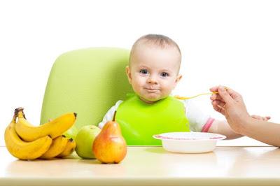 Menu Foods Babies 6 Months