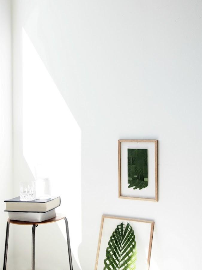 distintos modelos de cuadros con hojas naturales