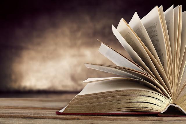 De libros y lecturas. El caso Salman Rusdhie
