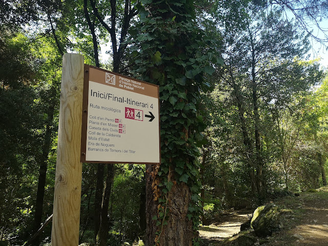 ruta micológica de poblet