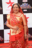Star Parivaar Awards 2017 Red Carpet Stills .COM 0022.jpg
