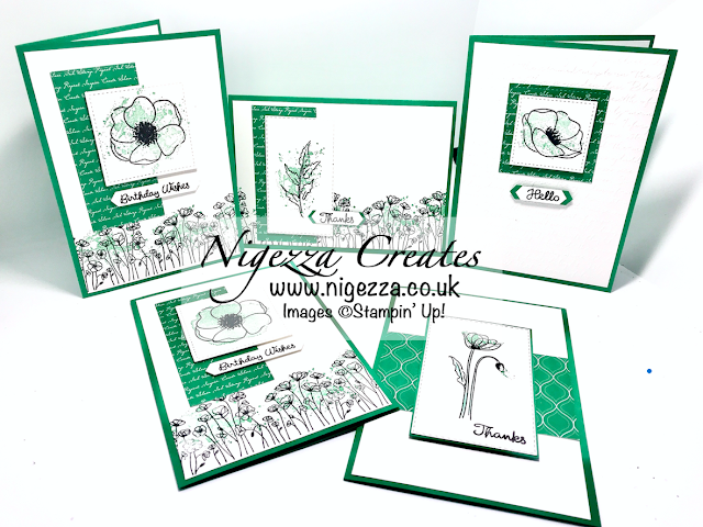"""Nigezza Creates 6""""x6"""" OSW Stampin' Up`! Painted Poppies"""