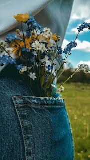 افكار زهور حلوة