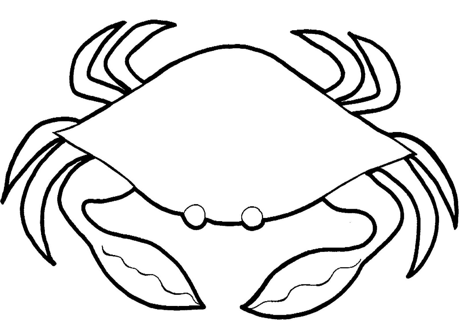 17 Marine Animals Crab Coloring Sheet