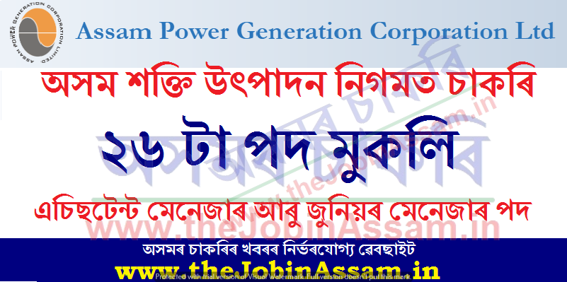 Assam Power Generation Corporation Limited (APGCL)