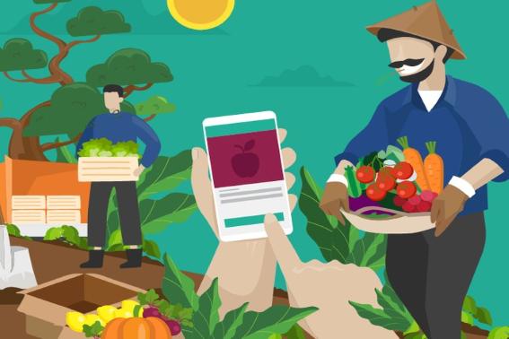 Layanan Jual Sayur Online Terpercaya di Indonesia