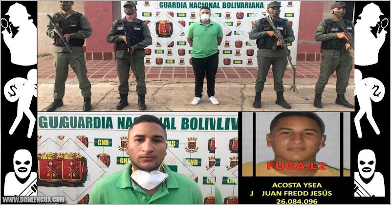 Régimen detuvo a otro supuesto mercenario terrorista más rellenito en Falcón