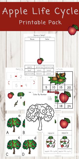 Apple-Life-Cycle-Printable-Pack-free-printable-worksheets-preschool-kindergarten-first-grade-