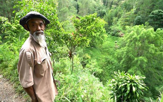 Старика называли сумасшедшим, пока не поняли, зачем он в течение 24 лет сажал деревья вокруг деревни