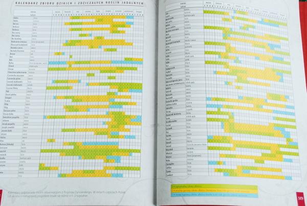 Kalendarz zbioru dzikich i zdziczałych roślin jadalnych