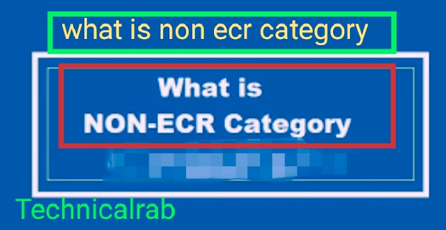 what is non ecr category