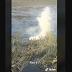 [INSOLITE / VIDEO] Dingue ! Un alligator crache de la fumée après avoir avalé un drone
