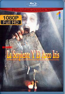 La Serpiente Y El Arco Iris [1998] [1080p BRrip] [Latino-Inglés] [LaPipiotaHD]