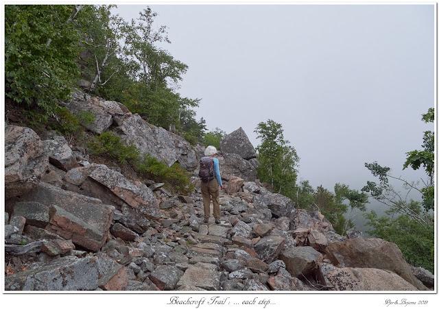 Beachcroft Trail: ... each step...
