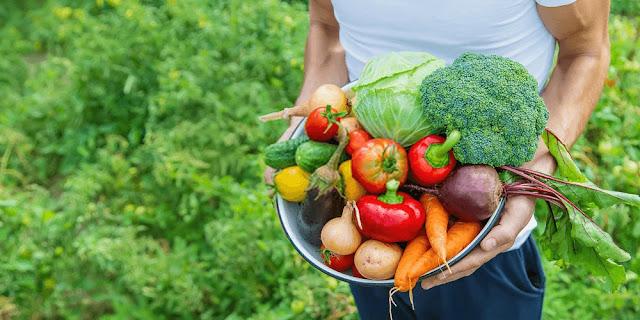 Lower back pain - seasons foods