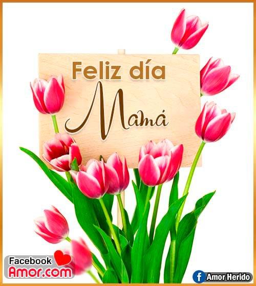 flores feliz día mamá
