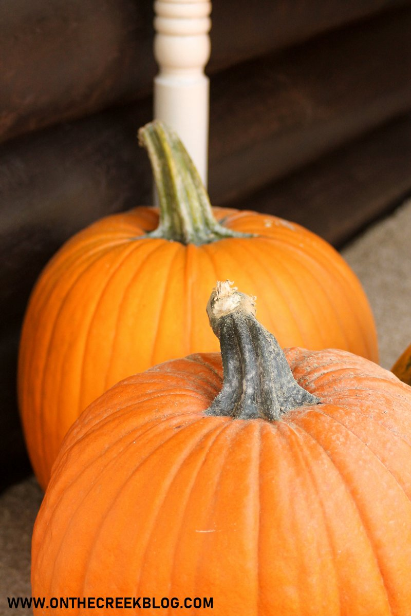 pumpkins grown in our garden | On The Creek Blog
