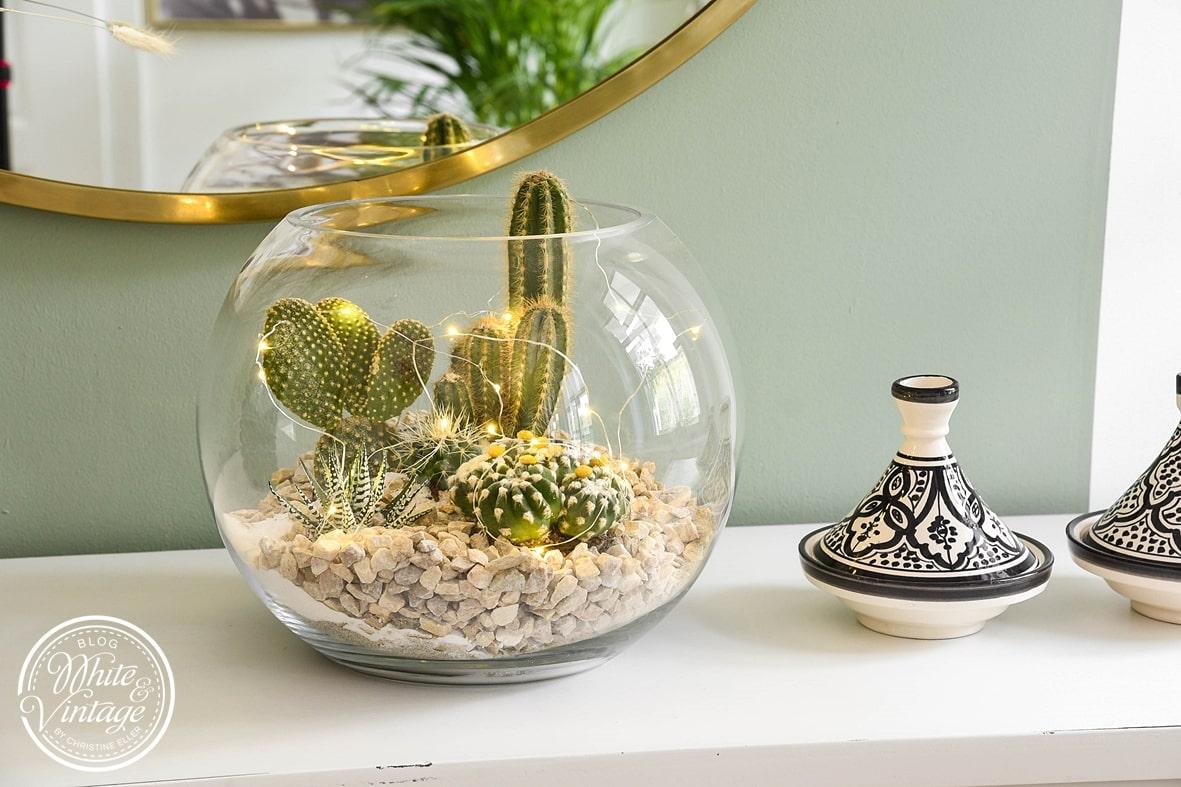 Miniaturlandschaft im Glas aus Kakteen und Sukkulenten.