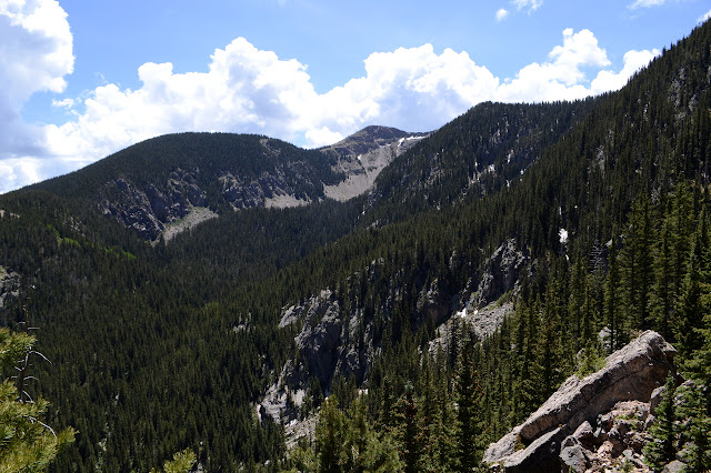 Lake Peak and surrounding forested tops
