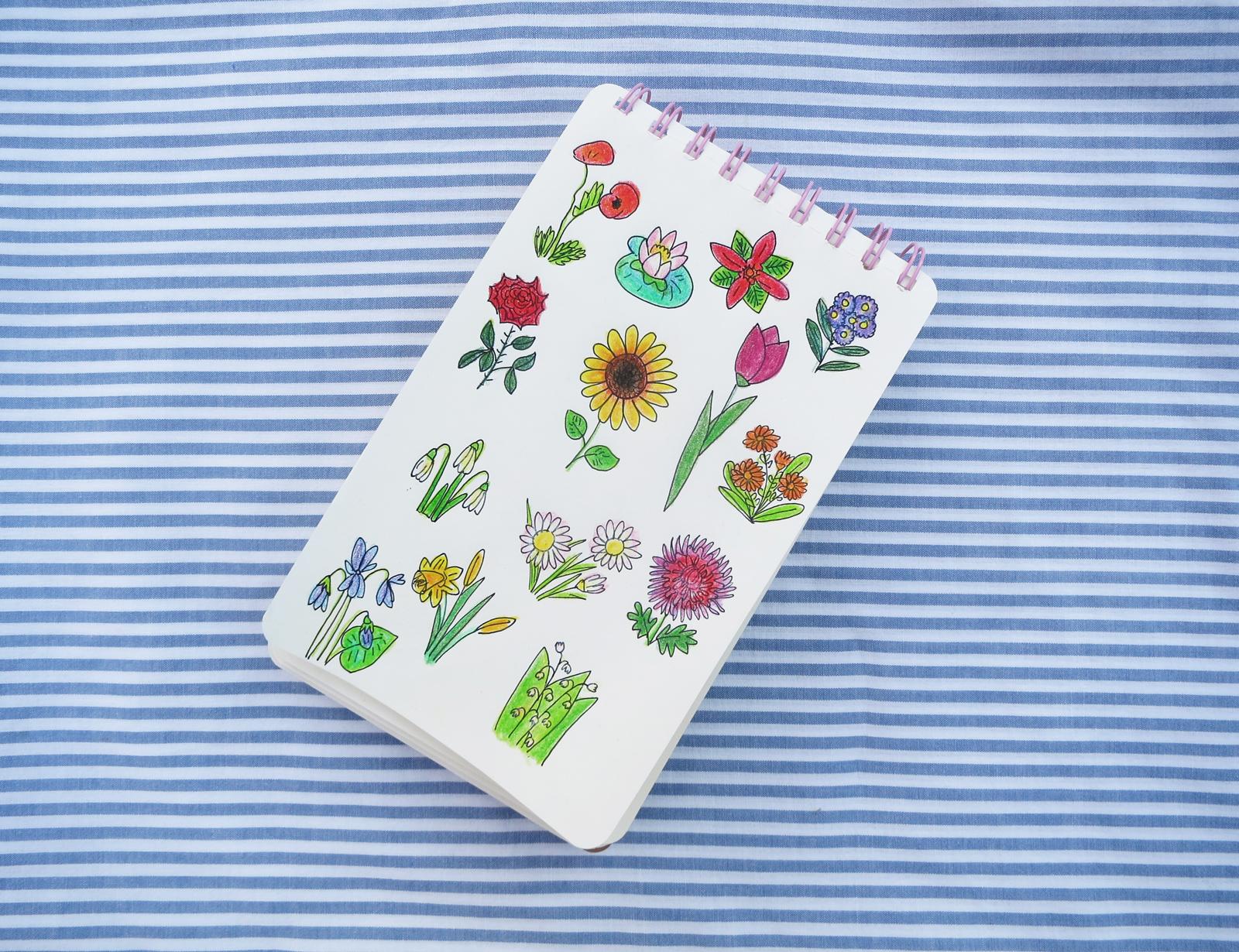 Les fleurs - kwiaty po francusku