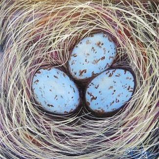 Cardinal nest with three eggs in oils