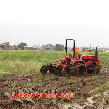 alat pertanian membajak sawah